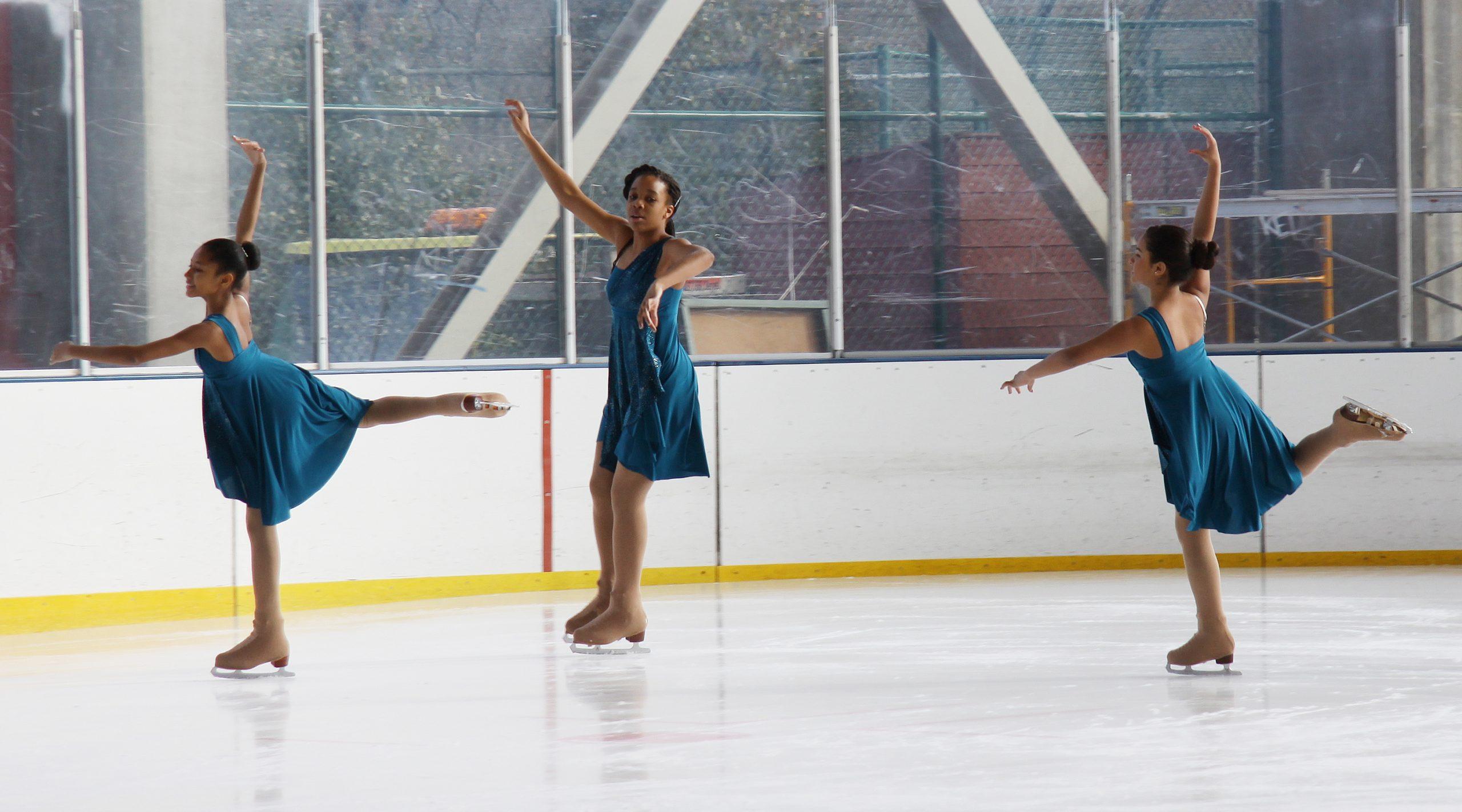 2013 Ice Show